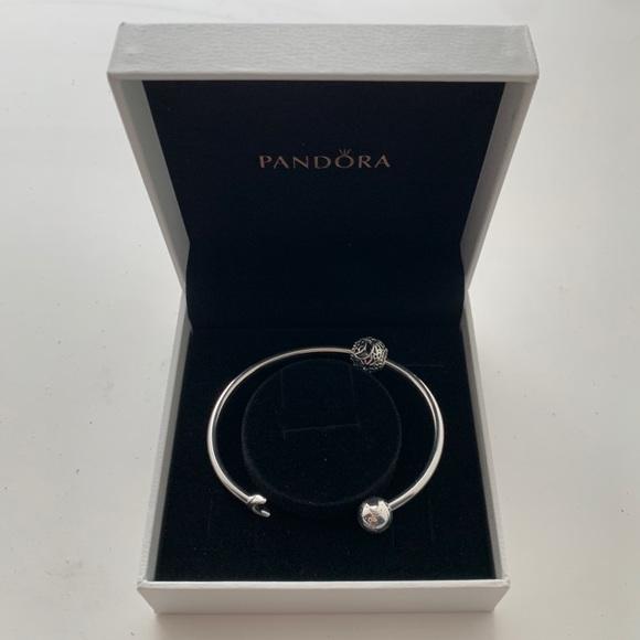 Pandora Celestial Open Bangle & Charm